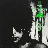 The Waterboys ‎– A Pagan Place