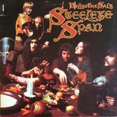 Steeleye Span ‎– Below The Salt